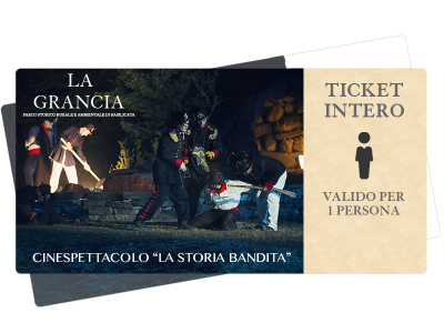 ticket-intero9